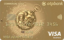 VISA gold business card